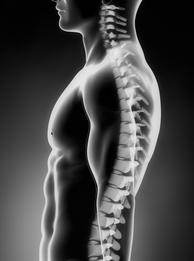 Spinal rehabilitation with Melissa Taylor